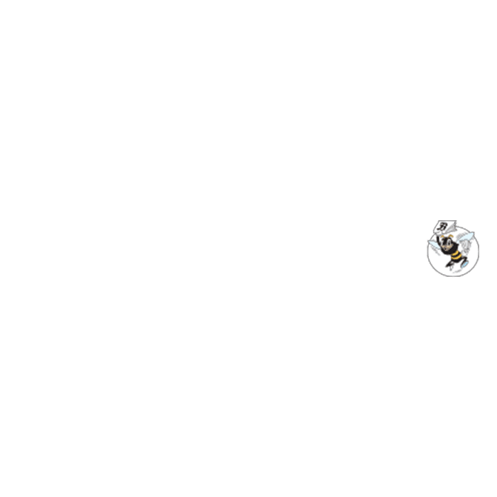 The Sacramento Bee | Client | Business Solutions | CirTech Connect